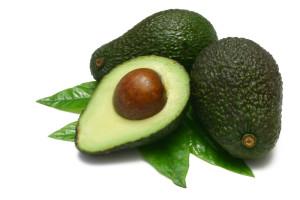 1000-avocado